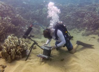 Biologija scubalife stranica